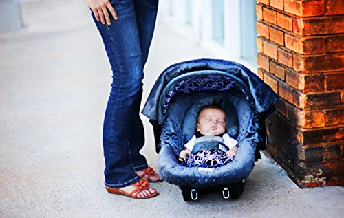 Carseat Canopy Caboodle complete accessories product image