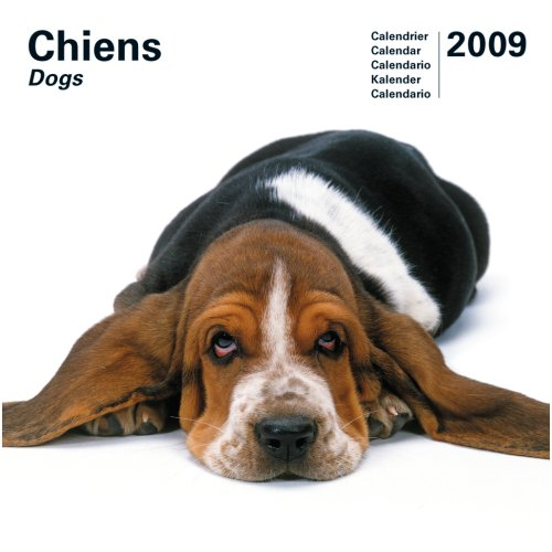 Dog 2009 Calendar - 3