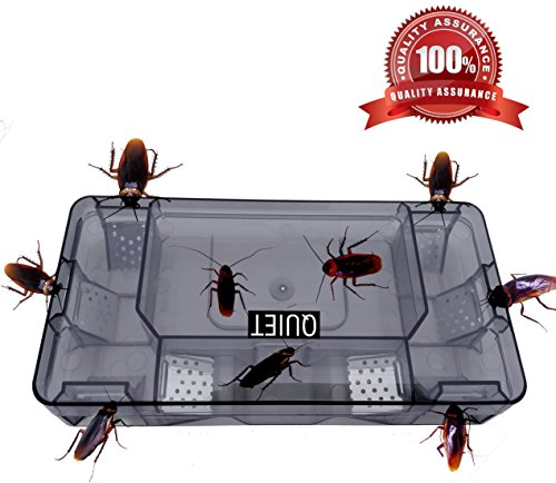 QUIET-100-Quality-AssuranceExquisite-Safe-Efficient-Cockroach-Killer-Reusable-Cockroach-TrapQuickly-Captured-Roaches