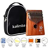 JIAN YA Kalimba 17 Keys Thumb Piano Solid Finger Piano and Kalimba Basic Course Great for Pinger Piano Beginners