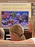 Aquarium for Your Home: Saltwater Reef an Aquarium for Your Television
