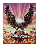 Harley-Davidson® Eagle Metal Sign
