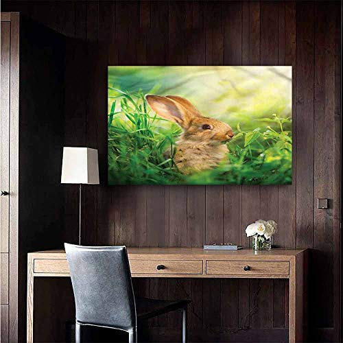 Gabriesl Stickers Wall Murals Decals Removable Rabbit Rodent in Green Grass Meadow Sofa Background Wall Size : W36 x H24
