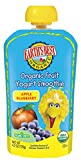 yogurt snacks - Earth's Best Organic Toddler Smoothie Pouches, Apple & Blueberry Fruit Yogurt - Kids Snack in Resealable Pouch Container 4.2 Oz (Pack of 12)