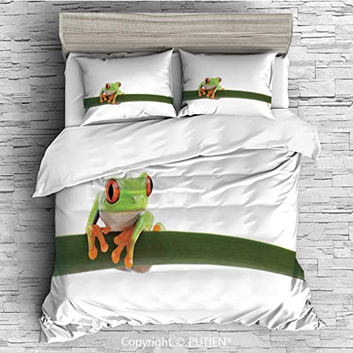 - FULL Size Cute 3 Piece Duvet Cover Sets Bedding Set Collection [ Animal Decor,Red Eyed Tree Frog Perches on a Long Slim Leaf Tropic Rainforest Animal Wild Life Photo,Green White ] Comforter Cover Set