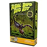 Discover with Dr. Cool Real Insect Excavation Science Kit