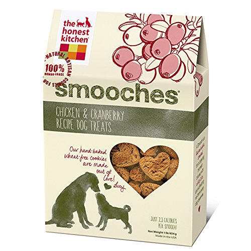 The Honest Kitchen Smooches: Natural Hand-Baked Wheat-Free Chicken & Cranberry Dog Treat Cookies, 16 oz