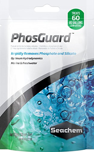 (PhosGuard, 100 mL bagged)