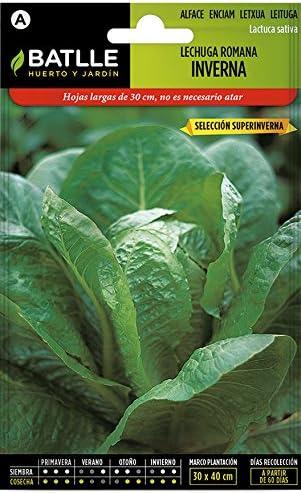 Semillas Hortícolas - Lechuga Romana Inverna sel. Superinverna ...