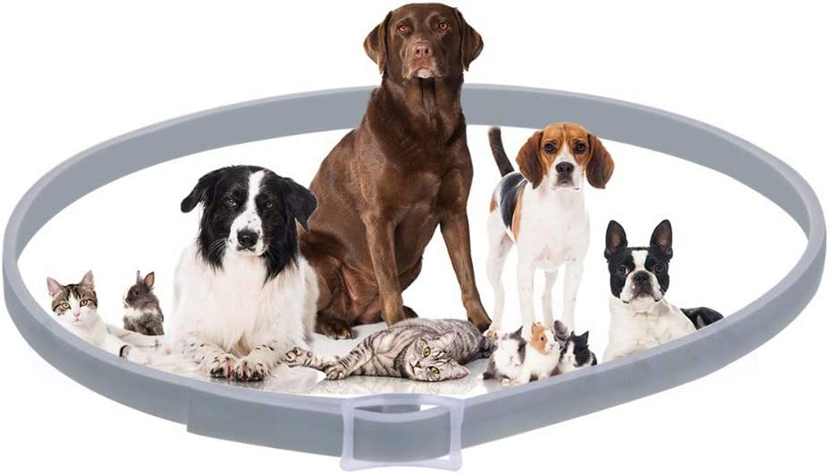 Flea and Tick Collar for Pet Dogs Cat,Waterproof PET Collar Adjustable Anti Flea Rubber Collar Natural Safe