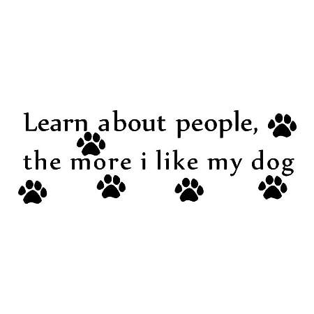 Nxcsb Aprenda sobre Las Personas Cuanto más me Gusta Mi Perro ...