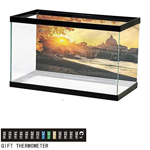 bybyhome Fish Tank Backdrop Fall,Sunset Tiber River Rome,Aquarium Background,30