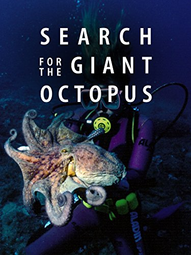 (Search for the Giant Octopus)