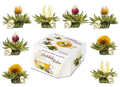 """Variacion de flores de te """"Te Floreciente Teelini"""" de Creano, en un exclusivo formato para tazas / 8 flores de te en 4 variaciones diferentes (te blanco)"""