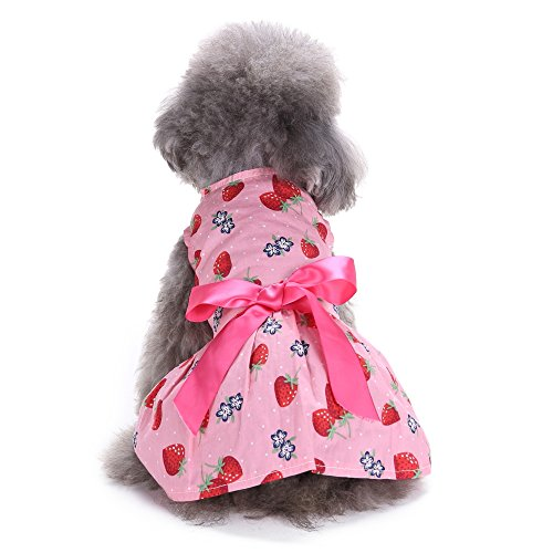 Dog Dress by Quno Cute Ribbon Sweetie Fruit Pattern Dog Girl Clothes Cozy Dog Shirt Pet Princess Costume Apparel for Cat Puppy Pink Strawberry (Girls Strawberry Sweetie Costumes)