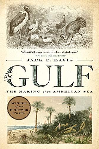 The Gulf: The Making of An American Sea: Amazon.es: Davis ...
