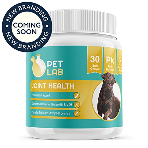 Pet Lab Hip And Joint Supplements For Dogs Glucosamine Chondroitin MSM | Chewable Supplement Dog Magnesium Chews | Hip & Joint Arthritis Pain Relief from Pet Lab