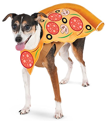 Halloween Pizza Box Costume (Pizza Slice Pet Suit, Medium)