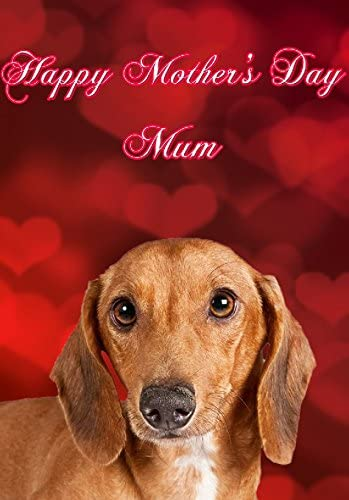 A5 Greetings Card Dachshund Happy Birthday Mum