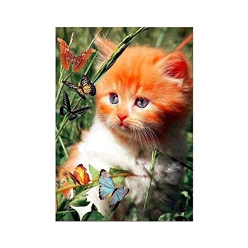 Cat Butterfly 5D Diamond Painting Embroidery Cross Crafts Stitch Home Wall Decor