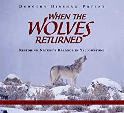 When the Wolves Returned: Restoring Nature's Balance in Yellowstone