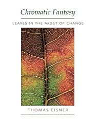 Chromatic Fantasy: Leaves in the Midst of Change