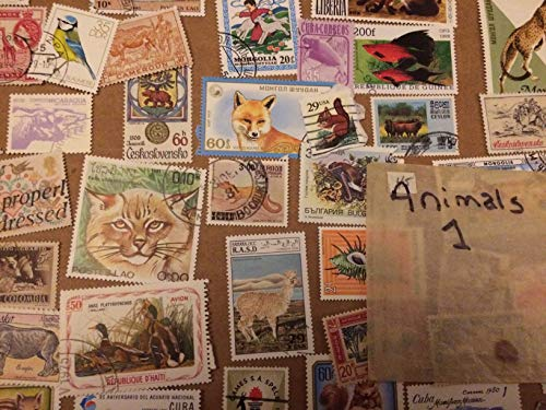 50 Animal stamps, all different, all over the world, beautiful stamps