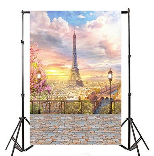 - Yeele 3x5ft Paris Panorama Photography Backdrop Romantic Paris France Eiffel Tower Seine River Photo Background Adult Baby Home Party Portrait Decorate Photo Booth Shoot Studio Props