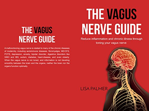 the vagus nerve guide reduce inflammation and chronic illness