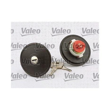 Valeo 247502 Inyección de Combustible, Negro: VALEO: Amazon.es: Coche y moto