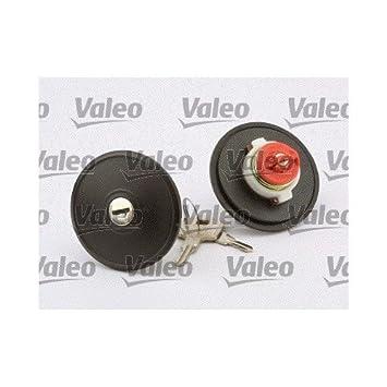 Valeo 247502 Inyección de Combustible negro: VALEO: Amazon.es: Coche y moto