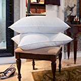 DOWNLITE Twin Pack 10/90 Goose Down and Feather Medium Density 20'' x 28'' Blend Bed Pillow, Jumbo, White