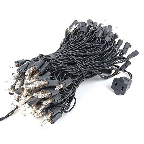 Novelty Lights 100 Light Clear Christmas Mini Light Set, Black Wire, 50' Long