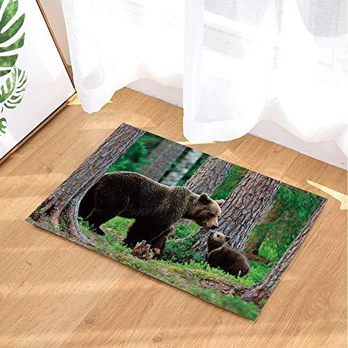 ZOZGETU Doormat Wild Animal Bath Rugs Springtime Forest Brown Bear Family Playing Non-Slip Doormat Floor Entryways Indoor Front Door Mat Kids Bath Mat 23.6x15.7 inch / 40 X 60cmin Bathroom Accessories -
