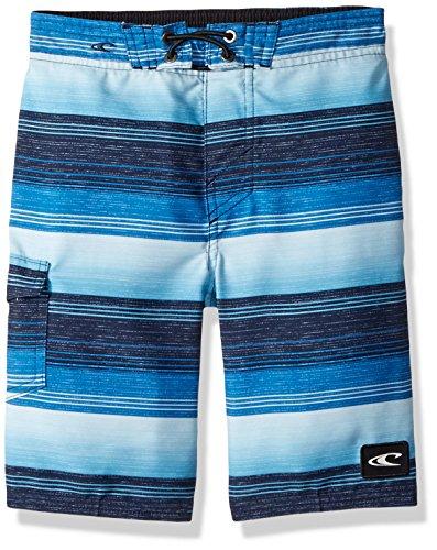 O'Neill Little Boys' Santa Cruz Print Boardshort, Stripe Blue, (Cruz Boys Swimsuit)