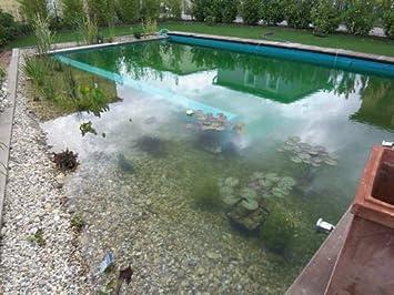 Garten Gartenteich Schwimmteich 6,99€//m² PVC Teichfolie Maigrün 1 mm 5 x 6 m