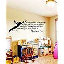 New Arrival Famous Cartoon figure Peter Pan tinkerbell removable wall decal art mural wall stickers kids home decoration