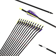 """12pc ID 6.2mm .244"""" Custom Length 22-33 Inch Carbon Arrows Spine 250 Target Practice & Hunting Arrow"""