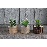 ''Handmade''Set of 3 decorative rustic design wood cedar log, Minimalist green plant and flower on the log, Perfect gift idea, Wood decor, Gift for her
