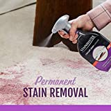 STAINMASTER Carpet Stain Remover Cleaner, 22 Fl Oz