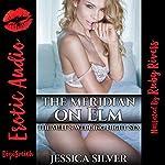 The Meridian on Elm: The MILF's Wedding Night Sex | Jessica Silver