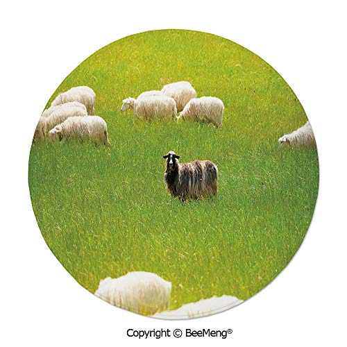 (Diameter31 inch,Printing Round Rug,Dragonfly,Mat Non-Slip Soft Entrance Mat Door Floor Rug Area Rug for Chair Living Room,,Nature,Black Sheep between White Goats on Grass Field Meadow Animal Farm Land)