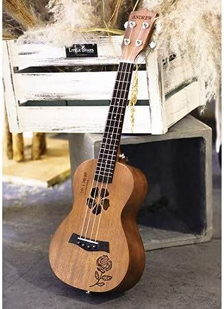 Mkulele Ukulele Guitarra pequeña Mujer Hombre Principiante ...