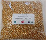 popcorn 20 lb - Yellow Popcorn Seeds 20 lbs or Twenty Pounds, USDA Certified Organic, Non-GMO, BULK