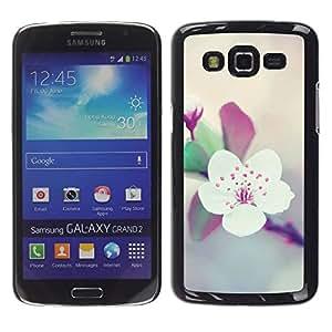 Apple Blossom Árbol floral de la primavera púrpura - Metal de aluminio y de plástico duro Caja del teléfono - Negro - Samsung Galaxy Grand 2