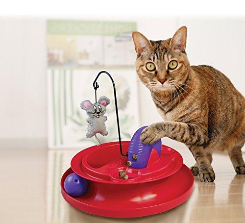 KONG-Cat-Playground
