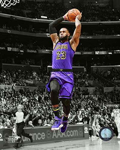 297bfd6e1180 Image Unavailable. Image not available for. Color  Lebron James Los Angeles  Lakers 2018-19 NBA Spotlight Action ...