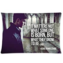 harry potter Custom Rectangle Pillow Cases Pillowcase 20x30 inch Two Side