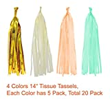 Paxcoo 35 Pcs Mint Gold Tissue Paper Pom Poms Tassel Garland for Baby Shower Party Decorations