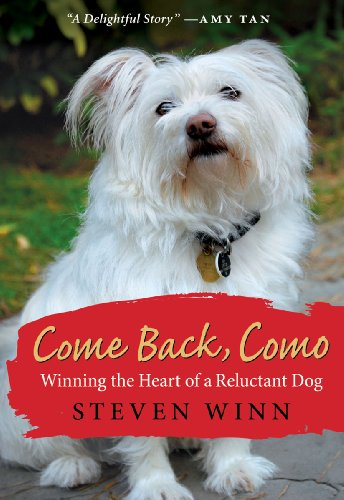 Come Back, Como: Winning the Heart of a Reluctant Dog cover